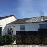 algebehandling, hvidt hus